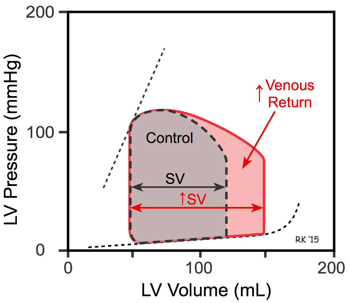 Ventricular pressure-volume loop - increased venous return