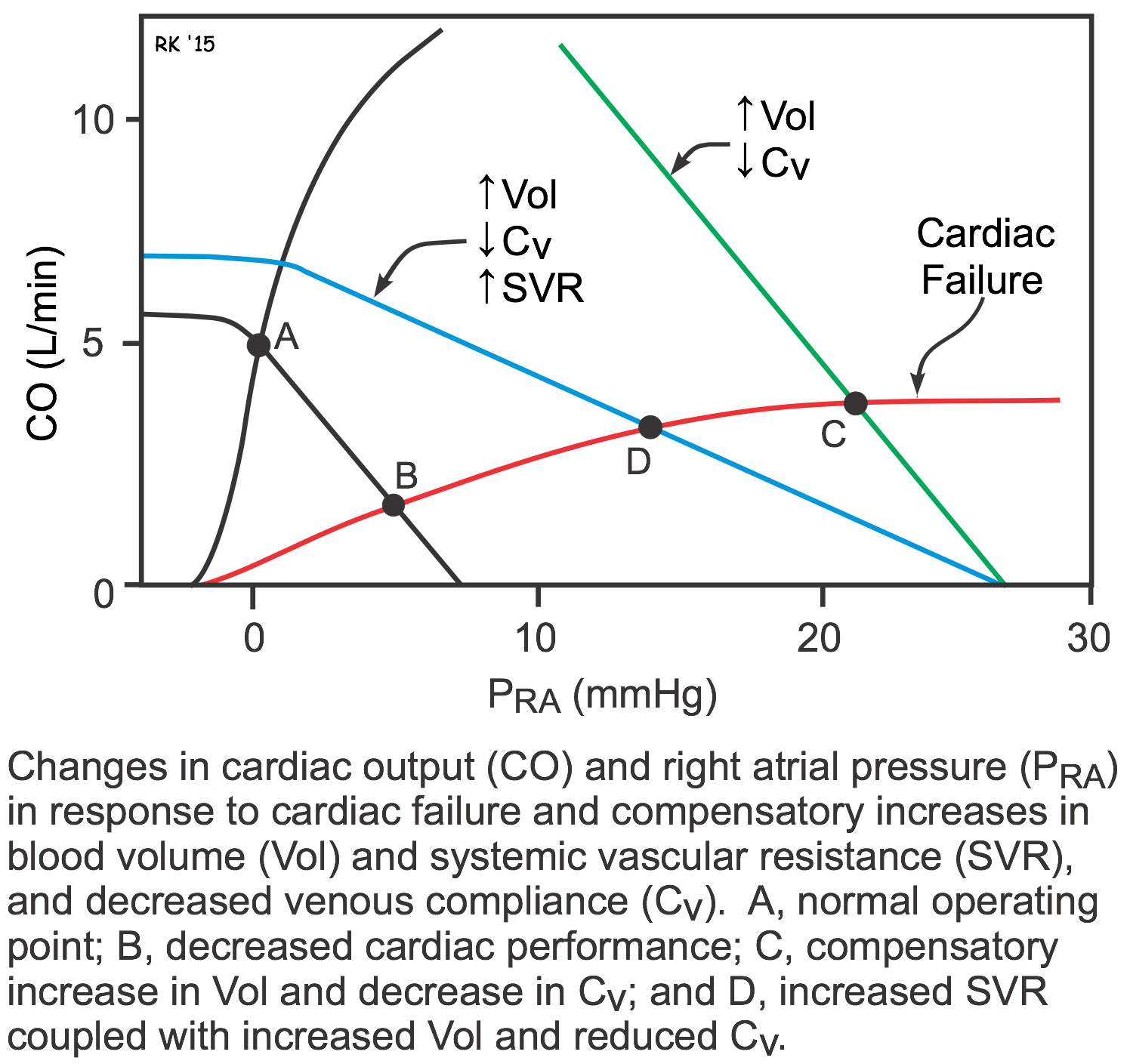 Cv Physiology Pathophysiology Of Heart Failure