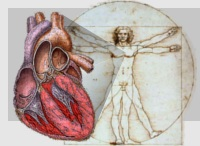 Image for Cardiovascular Physiology Concepts, Richard E Klabunde PhD