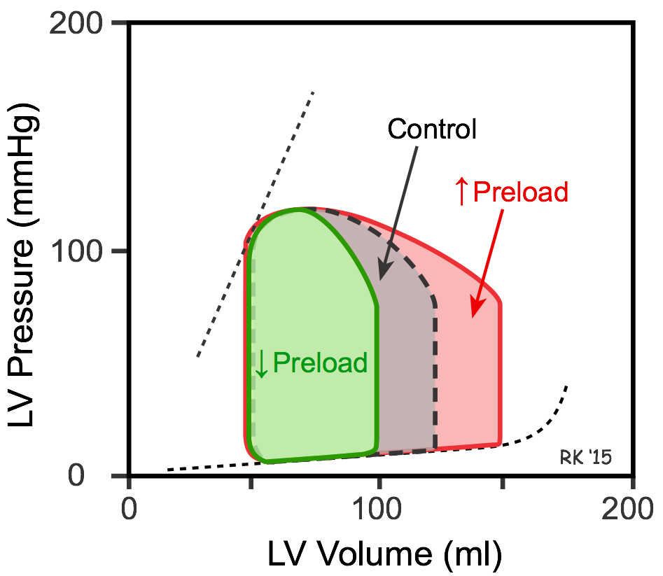 pv loop diagram cv physiology | effects of preload, afterload and inotropy ... control loop diagram