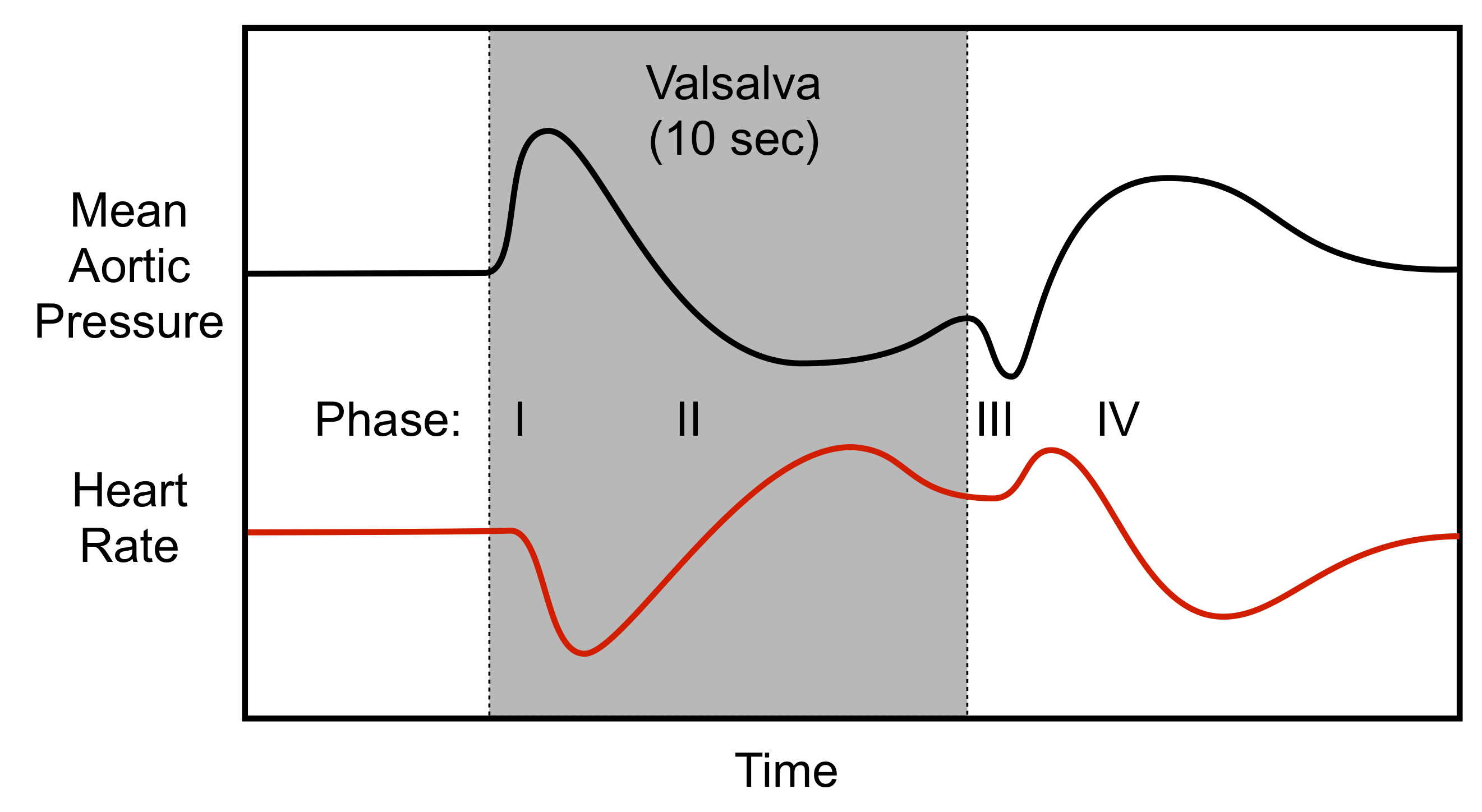 How is the test Valsalva. What is a Valsalva maneuver? 34