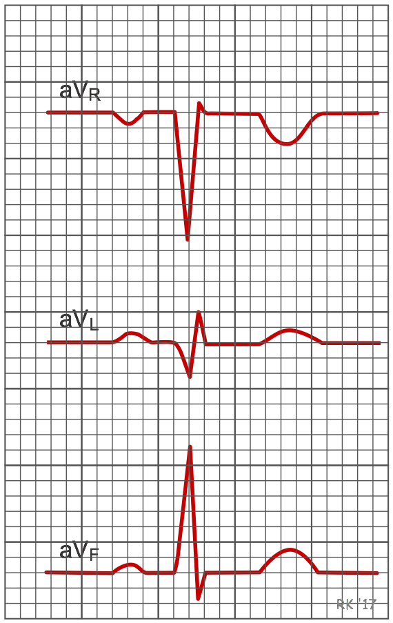 Wave Vector Png CV Physiology | Electr...