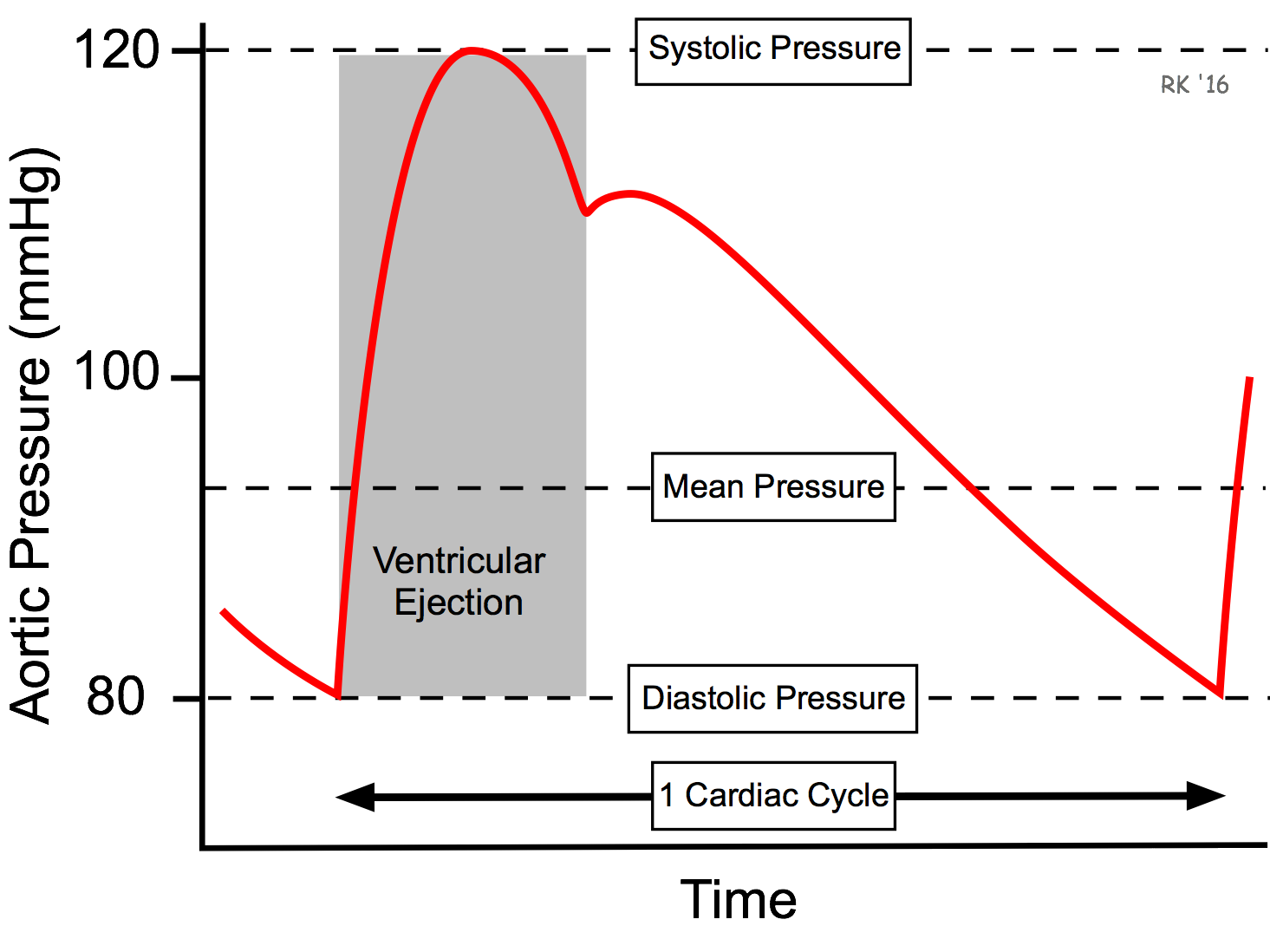 Cv Physiology Mean Arterial Pressure