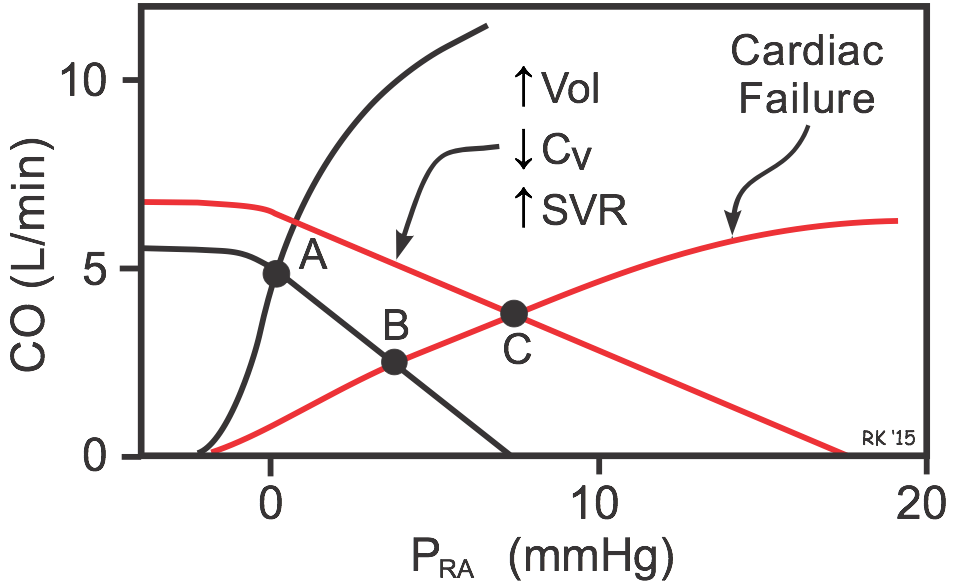 Cv Physiology Cardiac And Systemic Vascular Function Curves