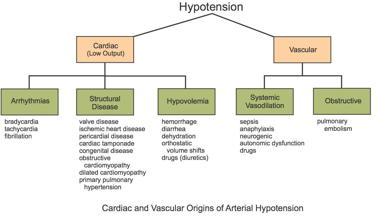 CV Physiology | Hypotension - Introduction